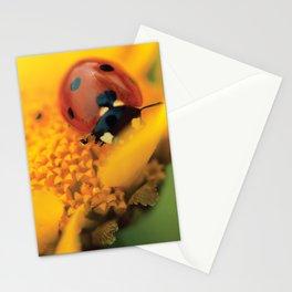 Ladybird, macro photography, still life, fine art, nature photo, romantic wall print Stationery Cards