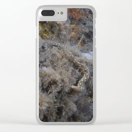 Eel Clear iPhone Case