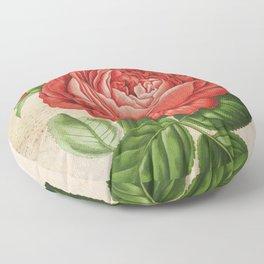 Red Hybrid Perpetual, Paul Neyron Rose Vintage Print Floor Pillow