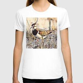 Lapwing T-shirt