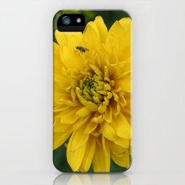 Det er ikke plass til oss begge iPhone Case