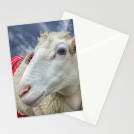 Beautiful sheep Stationery Cards