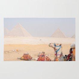 Camel at Pyramids of Giza Egypt Cairo Rug