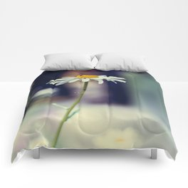 Daisy I Comforters