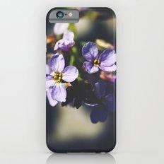 Your Heart's Desire iPhone 6s Slim Case