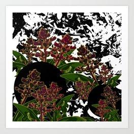 NIGHT NATURE Art Print