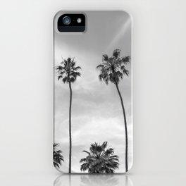 Palm Trees in La Jolla, California iPhone Case