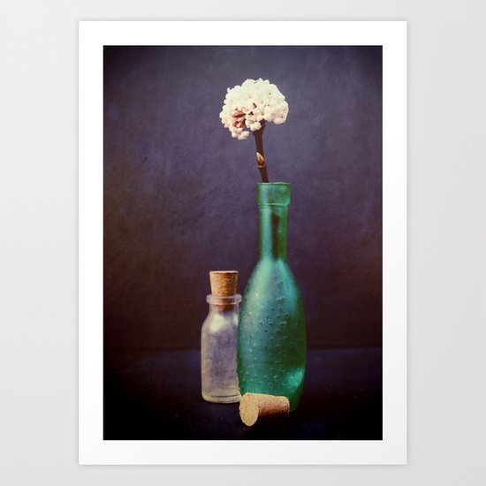 Glass Bottles with  a Winter Blossom Art Print