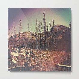 Burnt Forest I Metal Print