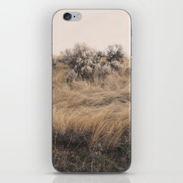 Walkabout iPhone Skin