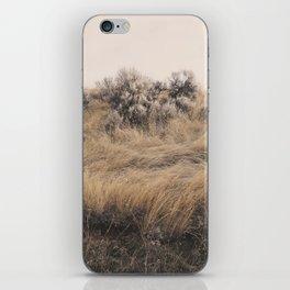 Walkabout iPhone Skin