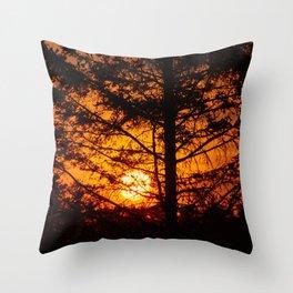 Sunshine in Canada Throw Pillow