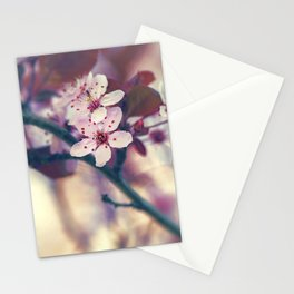 Cherry Blossom - Yamazakura Stationery Cards