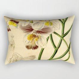 Papilionanthe teres (as syn. Vanda teres) Rectangular Pillow