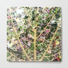 Lace Leaf Metal Print