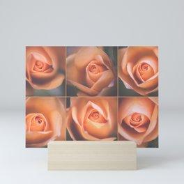 Pale roses Mini Art Print