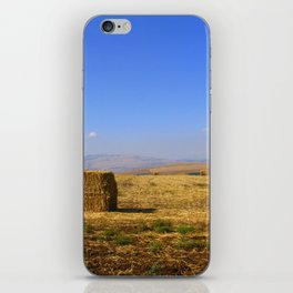 Hay iPhone Skin