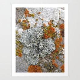 Untitled 5. Art Print