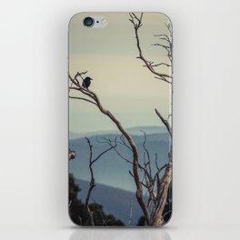 Alpine Vantage Point  iPhone Skin