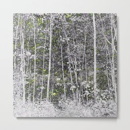 125 - White Forest Metal Print