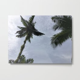 Palm trees and the clouds Metal Print