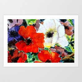 colorful poppies Art Print