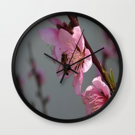Honey Bee On Open Peach Tree Blossom Wall Clock