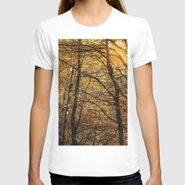 Forest in Autumn time T-shirt
