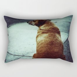 Doggie waits Rectangular Pillow