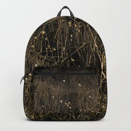 There and back XII Backpack