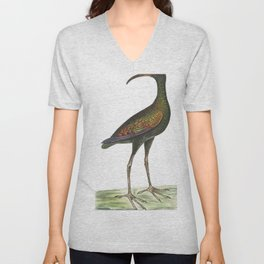 Brazilian Curlew or Guarauna  from The Naturalists Miscellany (1789-1813) by George Shaw (1751-1813) Unisex V-Neck