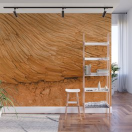 Bryce Canyon National Park Wood Texture Wall Mural
