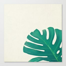 Monstera II Canvas Print