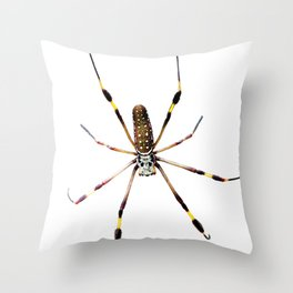 Watercolor Graphic 11, Spider Crawl, Golden Orb-weaver Snow Throw Pillow