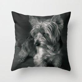 drawing dog light Throw Pillow