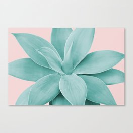 Blush Agave Romance #1 #tropical #decor #art #society6 Canvas Print