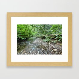 Winding Stream Framed Art Print