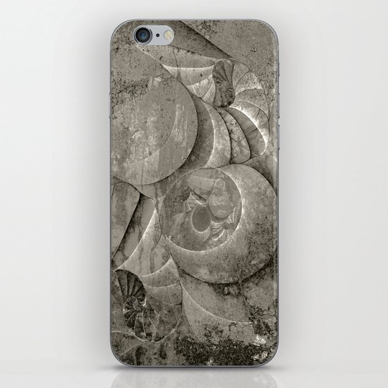 Fossilized Shells - Black & White iPhone & iPod Skin