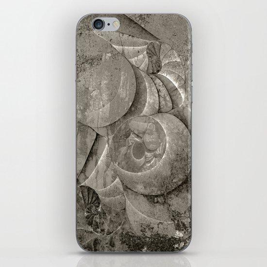 Fossilized Shells - Black & White iPhone & iPod Skin