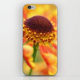 Love runs in her thrilling veins iPhone Skin