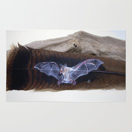 Fruit Bat on a Feather Rug