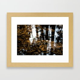 Bridgewater, Nova Scotia Framed Art Print