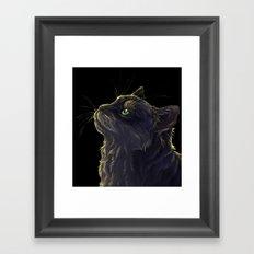 Cat and the light  Framed Art Print