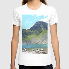 Mountain Stream Alpine landscape T-shirt