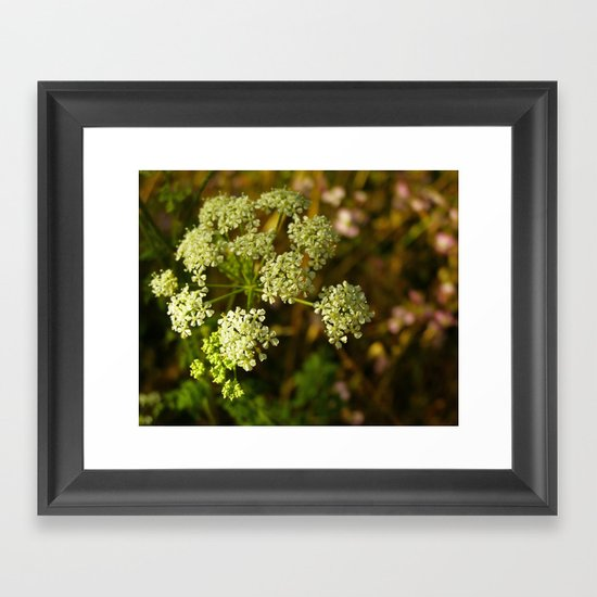 California Coast Floral III Framed Art Print