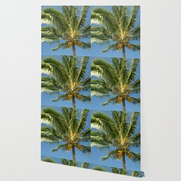 Hawaiian Coconut Palm Tree Wallpaper
