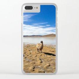 No Drama Llama Clear iPhone Case