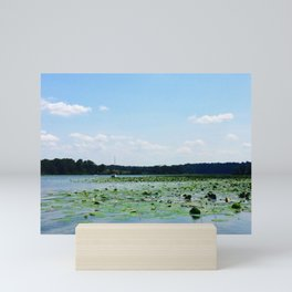 Lilly pads and sailboat in creek | Eastern Shore, MD | Minimalist landscape photography Mini Art Print