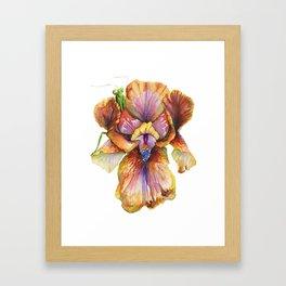 Lord of the Iris Kingdom Framed Art Print
