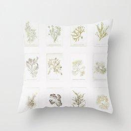 Naturalist Mosses Throw Pillow
